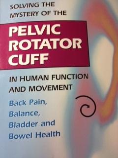 Pelvic Rotator Cuff