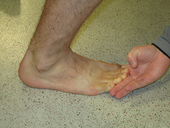 ankle motion